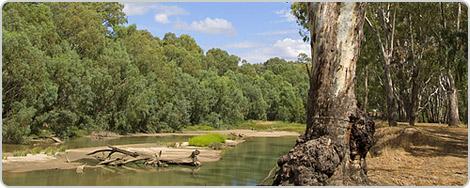 Hotels PayPal in Narrandera New South Wales Australia