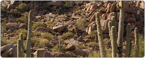 Hotels PayPal in Scottsdale (AZ) Arizona United States