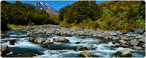 Hotels PayPal in Tongariro National Park  New Zealand