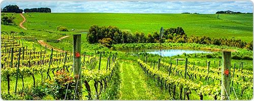 Hotels PayPal in Mclaren Vale South Australia Australia