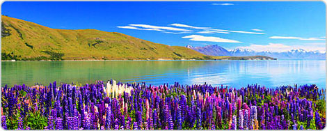 Hotels PayPal in Lake Tekapo  New Zealand