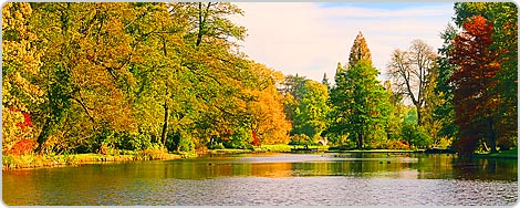 Hotels PayPal in Dessau-Rosslau  Germany