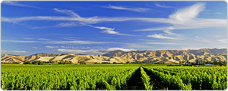 Hotels PayPal in Blenheim  New Zealand